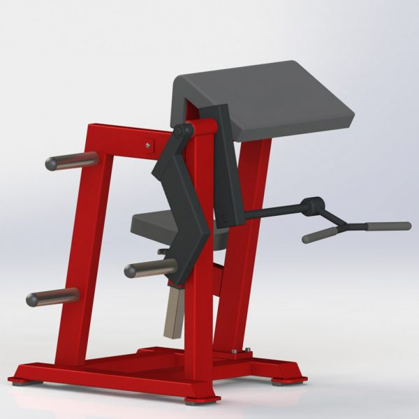 Plate Loaded Bicep Curl