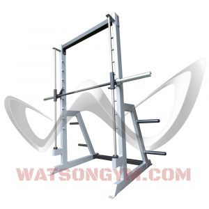 Plate Loaded Smith Machine with 4 x Weight Storage