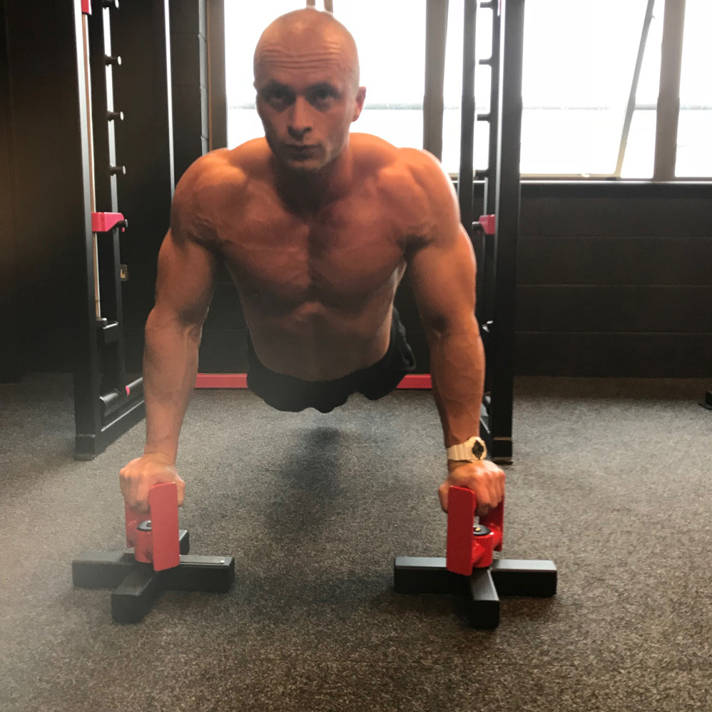 Gym Ball Watson: TRX And Rotating Push Up Stands Workout
